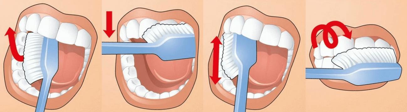 Правильные движения при чистке зубов